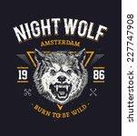 wolf head grunge vector art.  | Shutterstock .eps vector #227747908