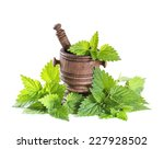 Fresh Nettle Leaves With A...