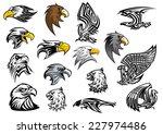Cartoon Eagle  Falcon And Hawk...