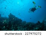 diver and various coral reefs... | Shutterstock . vector #227975272