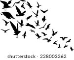illustration with gull... | Shutterstock .eps vector #228003262