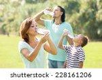 ordinary family of three... | Shutterstock . vector #228161206