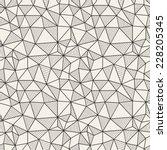 vector seamless pattern. hand... | Shutterstock .eps vector #228205345