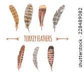 watercolor turkey feathers... | Shutterstock .eps vector #228489082