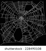 illustration with spider web... | Shutterstock .eps vector #228490108