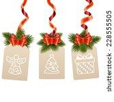 vector christmas label   Shutterstock .eps vector #228555505