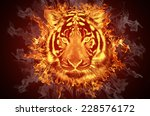 Head Of A Tiger In Tongues Of...