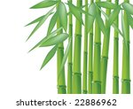 bamboo  vector illustration ... | Shutterstock .eps vector #22886962