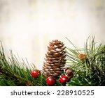 christmas decoration | Shutterstock . vector #228910525