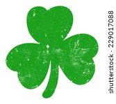 shamrock green  grunge  vector... | Shutterstock .eps vector #229017088