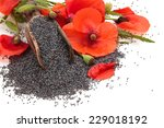 Poppy Flowers And Poppy Seeds ...