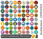 set of veterinary flat icons | Shutterstock . vector #229024525