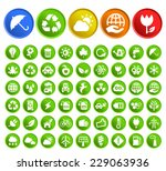 set of 50 standard quality... | Shutterstock .eps vector #229063936