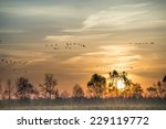the moorland in the autumn - stock photo
