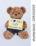 a cute teddy bear holding a...   Shutterstock . vector #229141525