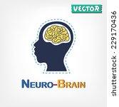 brain anatomy   frontal lobe  ... | Shutterstock .eps vector #229170436