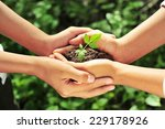 two hands holding together... | Shutterstock . vector #229178926