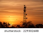 Radio Tower At Sunset In...