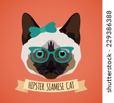 hipster siamese cat with... | Shutterstock .eps vector #229386388