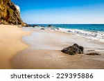west coast with beautiful beach ... | Shutterstock . vector #229395886