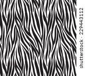 animal zebra print trendy... | Shutterstock .eps vector #229443112