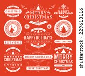 christmas decoration vector... | Shutterstock .eps vector #229613116