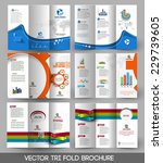 business tri fold brochure... | Shutterstock .eps vector #229739605