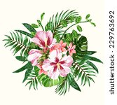 bouquet of tropical flowers and ...   Shutterstock .eps vector #229763692