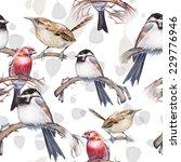 Birds Paradise Pattern