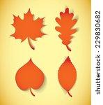 autumn leaves. vector... | Shutterstock .eps vector #229830682