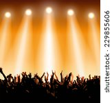 concert crowd | Shutterstock .eps vector #229855606