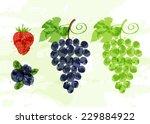 Set Of Colorful Fresh Fruit...