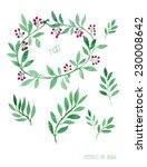 floral decor set. vector... | Shutterstock .eps vector #230008642