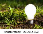 light bulb growing on the... | Shutterstock . vector #230015662