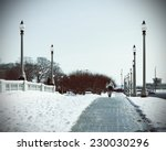 winter in the city    Shutterstock . vector #230030296