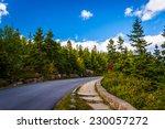 The Park Loop Road In Acadia...