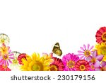 Beauty Mix Flowers Frame...