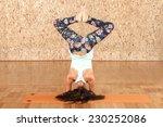 yoga practicing. beautiful... | Shutterstock . vector #230252086