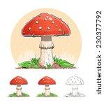 Amanita. Mushroom. Eps10 Vector ...