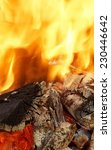 abstract bright fire flames... | Shutterstock . vector #230446642