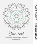 round vector ornament. circle... | Shutterstock .eps vector #230481292