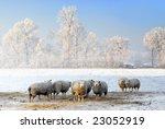 Dutch Winter Landscape With...