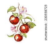 apple motif | Shutterstock . vector #230558725