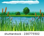 Summer Background With Pond An...