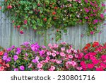 Wooden Fence With Flowers