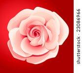 vector pink rose | Shutterstock .eps vector #23086966