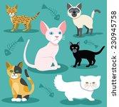 Vector Cats Flat Icons Set....