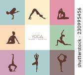 vector illustration of yoga...   Shutterstock .eps vector #230995456