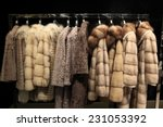 the various fur coats at the...   Shutterstock . vector #231053392