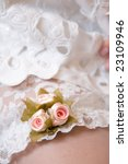 garter of the bride | Shutterstock . vector #23109946